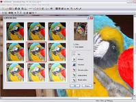 Screenshot programu 602PHOTO SUITE 4.1