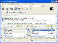 Screenshot programu AceFTP Pro 3.80.3
