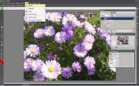 Screenshot programu ActivePixels 3.03  Alpha