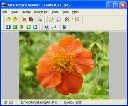 Screenshot programu AD Picture Viewer 3.9.1