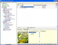 Screenshot programu Agent-MINI 2.12 START