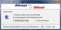 Screenshot programu AlwaysMouseWheel 3.56
