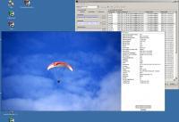 Screenshot programu AmoK Exif Sorter  2.56