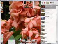 Screenshot programu Aros Magic Viewer 3.0