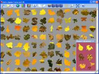 Screenshot programu Astra Jigsaw France and UK 1.12