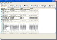 Screenshot programu Autoruns 13.51