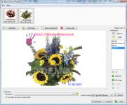 Screenshot programu Batch Picture Protector 3.0