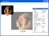 Screenshot programu CaptureScreen 1.9.4118