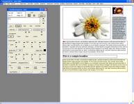 Screenshot programu Cascade DTP 4.0.19