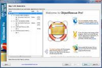 Screenshot programu Digital ObjectRescue Professional 6.5