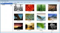 Screenshot programu Element Photo Gallery 4.0.44