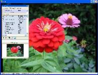Screenshot programu Exifer 2.1.5 Build 263