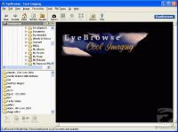Screenshot programu EyeBrowse 2.7