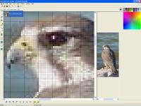 Screenshot programu Falco Icon Studio 4.33