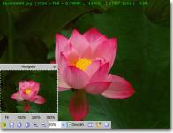 Screenshot programu FastStone MaxView 2.5