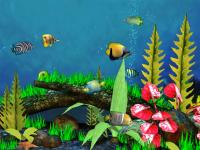 Screenshot programu Fish Aquarium 3D Screensaver 1.21