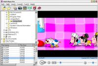 Screenshot programu Flash Player Pro 5.88