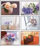 Screenshot programu Floral Designs 2 Screensaver