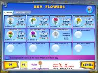 Screenshot programu Flower Stand Tycoon 1.0
