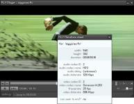 Screenshot programu FLV Player 2.0.24
