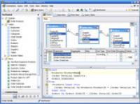 Screenshot programu FlySpeed SQL Query 3.2.5.16