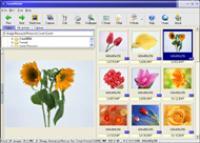 Screenshot programu FocusViewer 2.1
