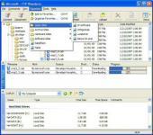 Screenshot programu FTP Wanderer 2.8.1