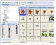 Screenshot programu IconCool Manager 6.21 Build 121120