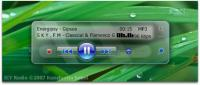 Screenshot programu Icy Radio 0.6.2.3