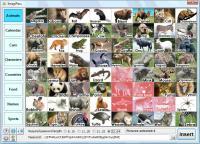 Screenshot programu ImagiPass 1.0.0.0