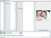 Screenshot programu Java Mass JPEG Resizer Tool 1.2