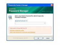 Screenshot programu Kaspersky Password Manager 8.0.3.287