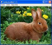Screenshot programu Lístky králíků 1.3