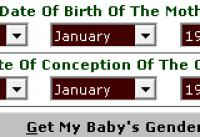 Screenshot programu MB Free Chinese Pregnancy Calendar 1.75