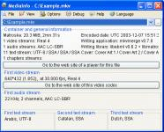 Screenshot programu MediaInfo 0.7.82