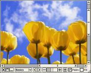 Screenshot programu Moo0 ImageViewer  1.63