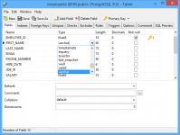 Screenshot programu Navicat for PostgreSQL 11.2.2 32-bit
