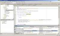 Screenshot programu NetBeans C/C++ 7.1.2 pro Linux