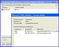 Screenshot programu Network Traffic Monitor 2.01