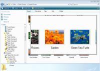 Screenshot programu OneLoupe 3.88