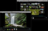 Screenshot programu OutWit Images 0.5.6.37