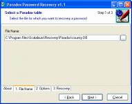 Screenshot programu Paradox Password Recovery 2.1