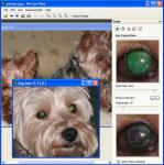 Screenshot programu Pet Eye Fix Guide 1.3.2