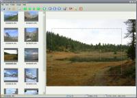 Screenshot programu Phorest 1.0.0.1