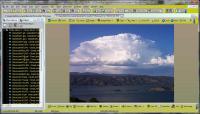 Screenshot programu Picture Organizer 7.6