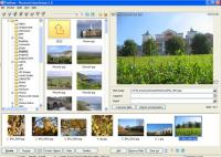 Screenshot programu PicturesToExe Deluxe 8.0.4