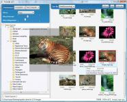 Screenshot programu PixGal3d 0.76