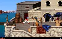 Screenshot programu Prince of Persia 2