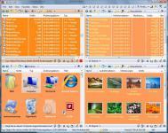 Screenshot programu Q-Dir 6.22 Portable
