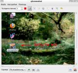 Screenshot programu qScreenshot 0.6